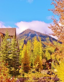 'Fall'ing In Love With Fernie, BC