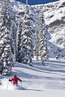 Five reasons to have a March ski vacation in Fernie
