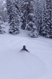 Powder Alert! Powder Alert! Fernie, BC!