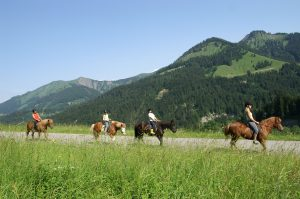 Summer Things to Do - Horseback Riding Fernie BC