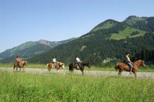Summer Things to Do - Horseback Riding Fernie BC