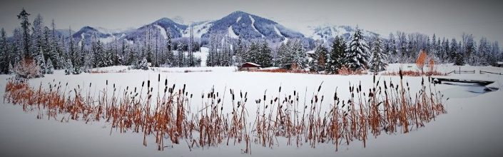 Snow Covered Ferne Alpine Resort